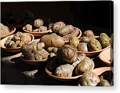 Potato Acrylic Prints
