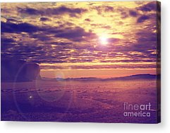 Middle Ground Acrylic Prints