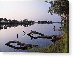 Zambesi River Photographs Acrylic Prints