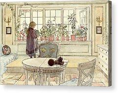 Larsson Acrylic Prints