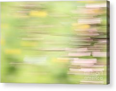 Abstract Forms Photographs Acrylic Prints