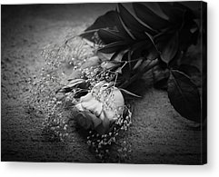 Opposing Forces Acrylic Prints