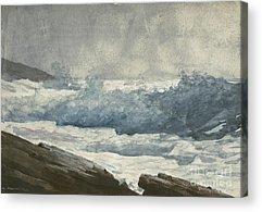 Coastal Maine Drawings Acrylic Prints