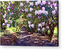 Forest Walk Acrylic Prints