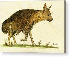 Hyena Acrylic Prints