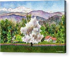Blooming Tree Acrylic Prints