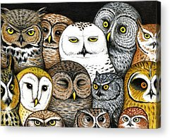 Designs Similar to Who's Hoo by Don McMahon