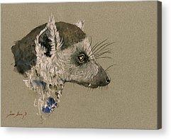 Lemur Acrylic Prints