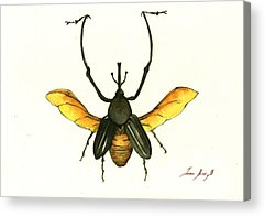 Insect Acrylic Prints