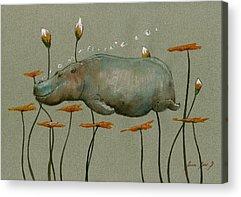 Hippo Acrylic Prints