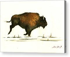 Bison Paintings Acrylic Prints
