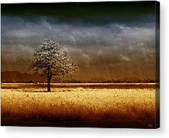 Stormy Weather Acrylic Prints