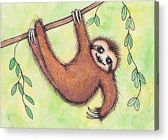 Sloth Acrylic Prints