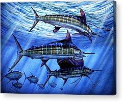 White Marlin Acrylic Prints