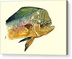 Salt Water Fish Acrylic Prints