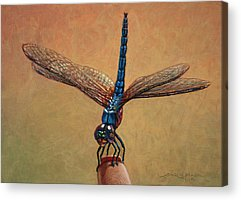 Dragonfly Acrylic Prints