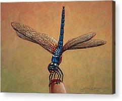 Bug Acrylic Prints