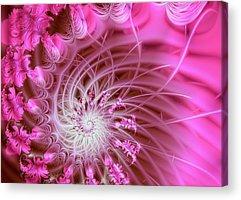 Fractal Acrylic Prints
