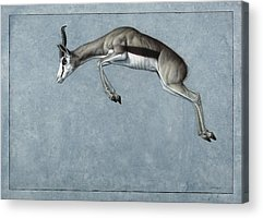Mammal Acrylic Prints