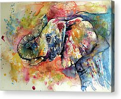 Animals Paintings Acrylic Prints