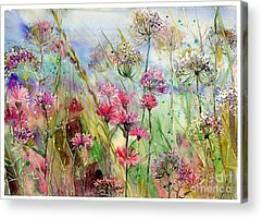 Thistle Acrylic Prints