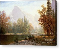 Yosemite Paintings Acrylic Prints