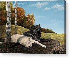 Lazy Digital Art Acrylic Prints