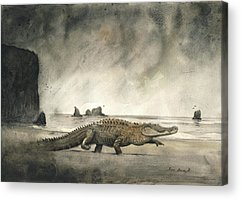 Crocodile Acrylic Prints