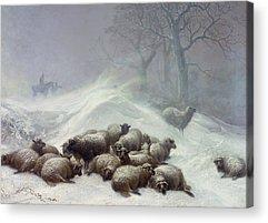 Snow Storm Acrylic Prints