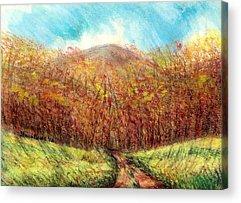 Maine Meadow Drawings Acrylic Prints