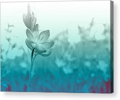 Bloom Acrylic Prints