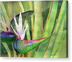 Florida Flowers Acrylic Prints