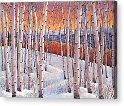 Birch Tree Acrylic Prints