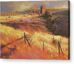 Barbed Wire Acrylic Prints