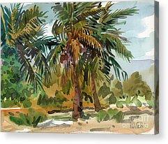 Coconut Trees Paintings Acrylic Prints