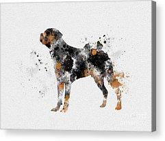Dogs Mixed Media Acrylic Prints
