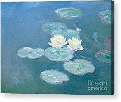 Lilies Acrylic Prints