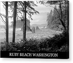 Washington Driftwood Beach Fog Acrylic Prints