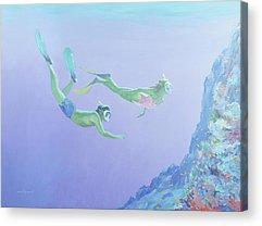 Reef Shark Acrylic Prints