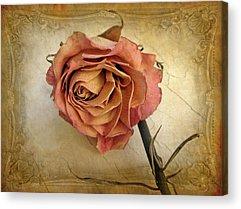 Cards Digital Art Acrylic Prints