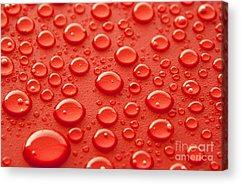 Droplets Acrylic Prints