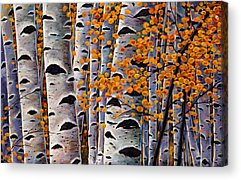 Rocky Mountains Acrylic Prints