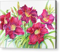 Daylily Acrylic Prints
