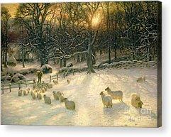 Winter Sunset Acrylic Prints