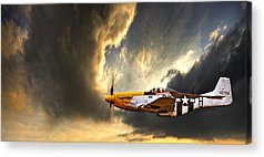 Airplane Acrylic Prints