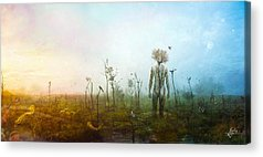 Mother Earth Acrylic Prints