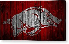 University Of Arkansas Acrylic Prints