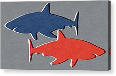 Reef Shark Acrylic Prints