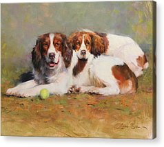 Dog With Tennis Ball Acrylic Prints