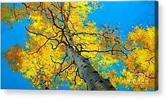 Fall Foliage Acrylic Prints